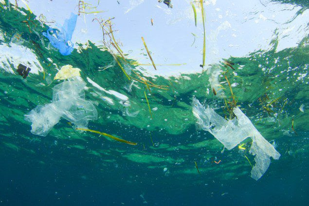 The study estimates at least 5.25 trillion plastic particles weighing 268,940 tons are currently floating at sea. Photo: Shutterstock/Rich Carey