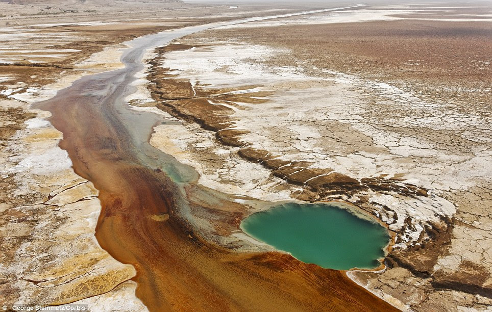 Salt waters seep out of the ground, forming a slow moving brown river on the north side of the Dead Sea's south lake