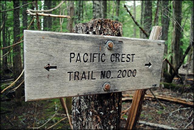 Pacific Crest Trail Sign - Ramona Falls Trail - Mt. Hood