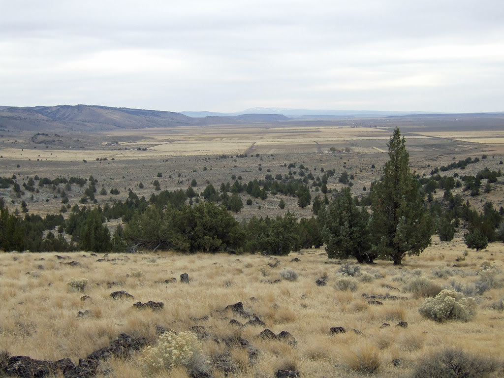 South to Steens Mountain