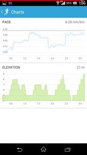 20140308_RunKeeper(Running)charts