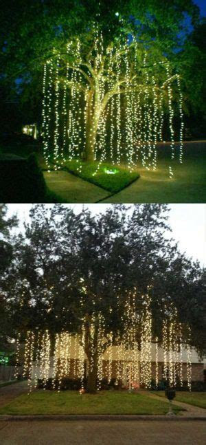 Best 25  Outdoor tree lighting ideas on Pinterest   Lights