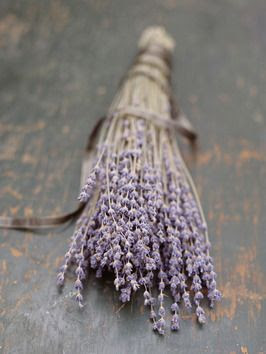 Dried Lavender Produces Natural Delicate Fragrance