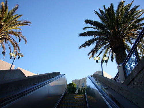 palms, 16th street bart station