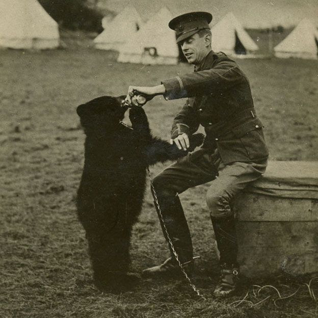 Winnie the bear with Harry Colebourn