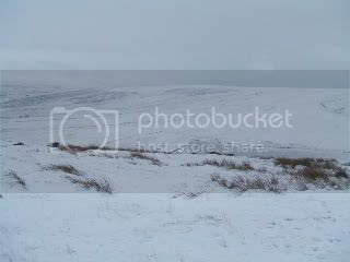 snow,moors,ice,grassland,Winter,hillside