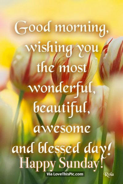 Good Morning Wishing You The Most Wonderful Beautiful Awesome And