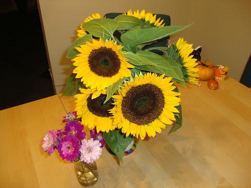 Princeton Farmer's Mkt Flowers