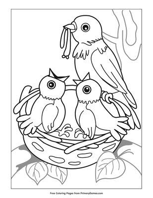 63 Coloring Pages Birds Nest For Free