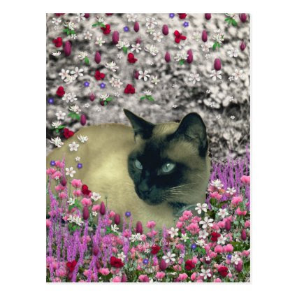 Stella in Flowers I – Chocolate Cream Siamese Cat Postcards