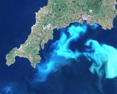 Imagem da agência espacial americana, Nasa, mostra formação massiva de algas Emiliania huxleyi na costa da Inglaterra (Foto: Nasa)