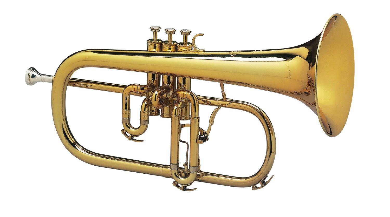 Bugle 2