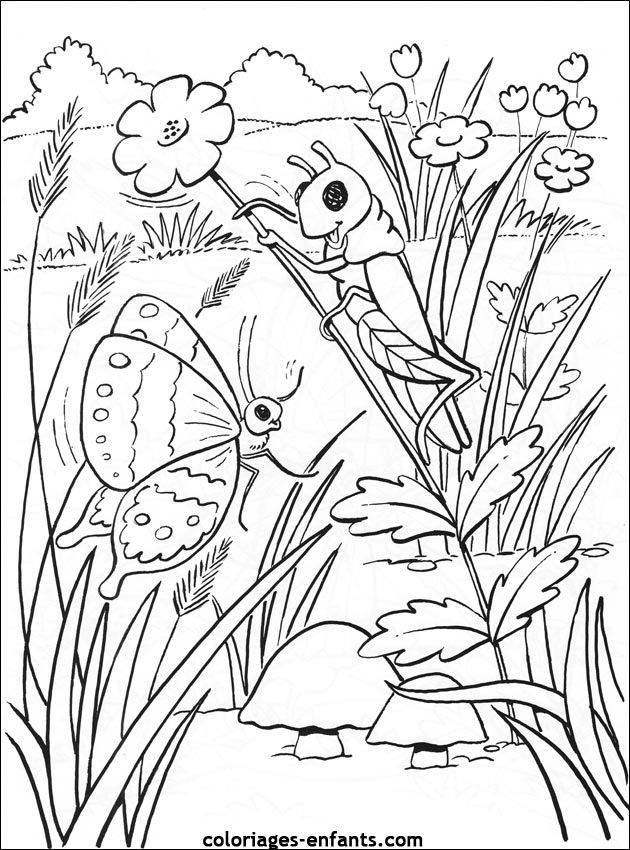 Coloriage Chenille Papillon Ideas Vintage Printables Animal Insect