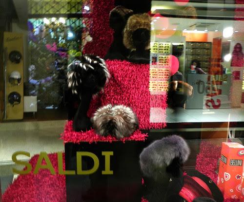Window Shopping In Venice (Skunk Hat)
