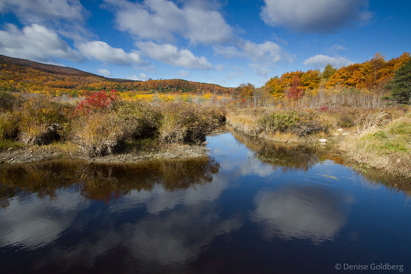 autumn colors and cloud reflections