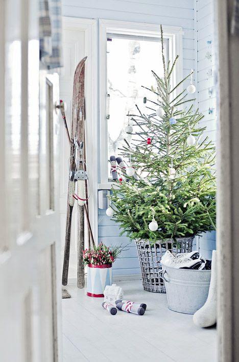 christmas tree..