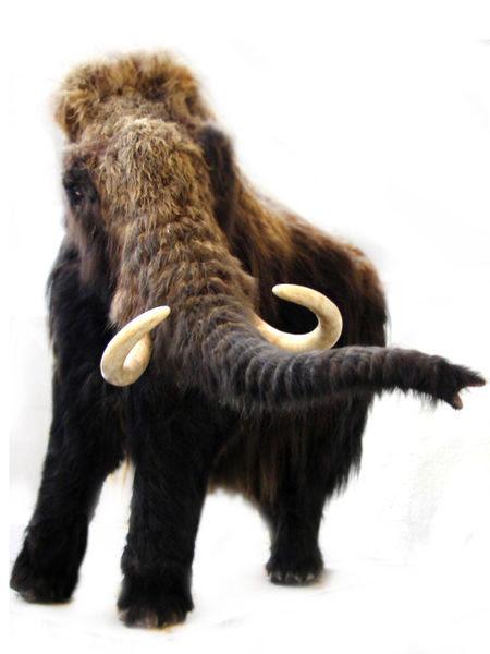 File:Mammothquagga.jpg