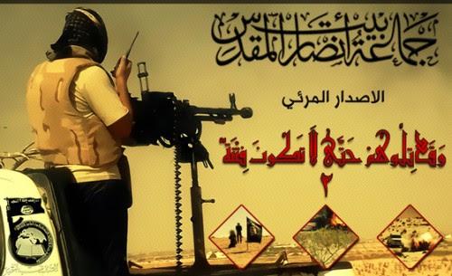 Ansar Bayt al Maqdis (Ansar Jerusalem) Sinai Attacks December 2013-thumb-560x342-2639