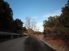 Los Gatos Creek Trail on the way back