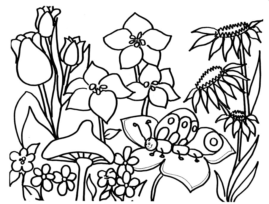 950 Top Spring Coloring Pages Cartoon , Free HD Download