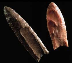 Clovis points, Kimmswick, Missouri (left)and St. Clair County, Illinois (right). Image Courtesy of museumlinkIllinois.