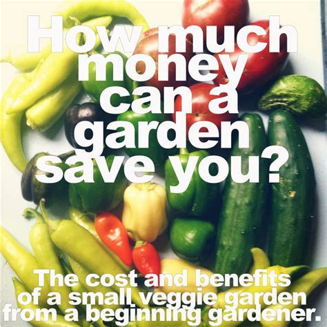 How Much Money Can a Garden Save You? The Cost and