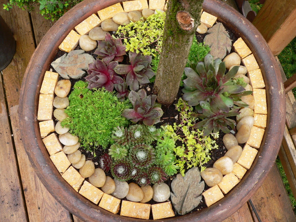 The Pecks: Decorating outdoor pots with stone, small plants ...