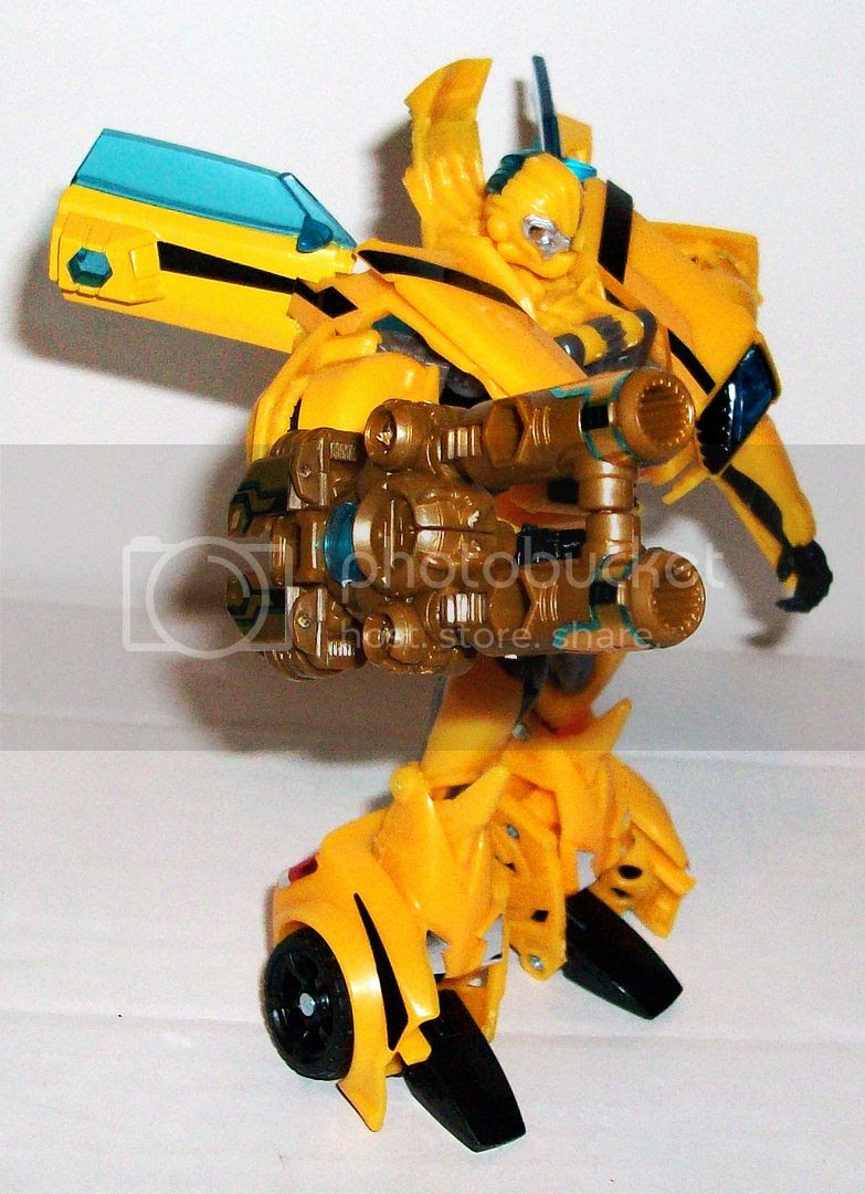 Bumblebee AM-02 photo 081_zpsf3db861c.jpg