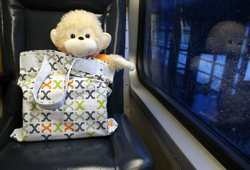mdc monkey takes a ride on the metra 2 #NeoCon09