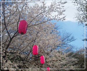 千葉城のさくら祭りにやってきました