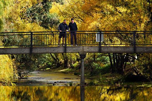 Bright, Victoria, Australia, Ovens River IMG_4606_Bright