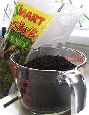potting soil
