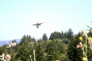 drones stephen1