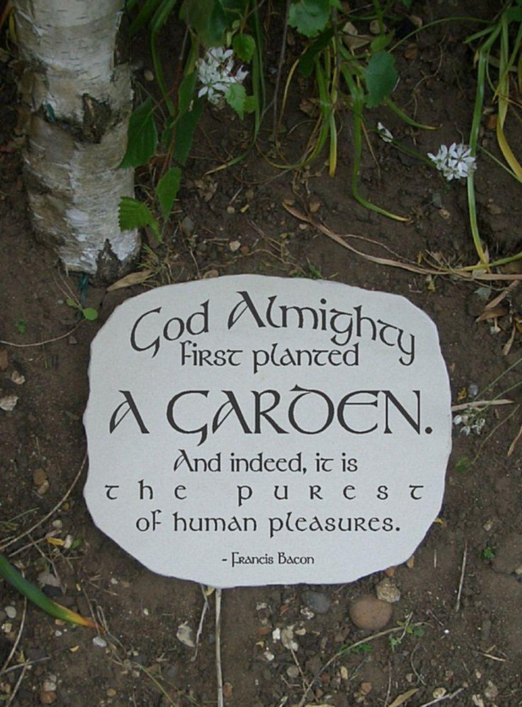Inspirational Garden Quotes. QuotesGram