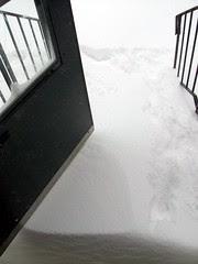 Snow_11211c