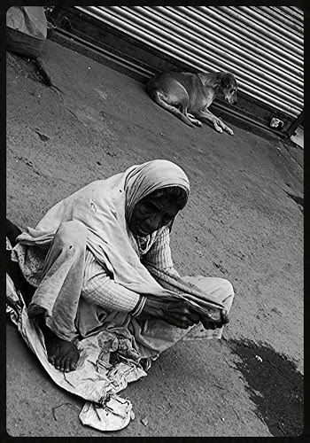 Right Of Admission Reserved For Dogs And Beggars by firoze shakir photographerno1