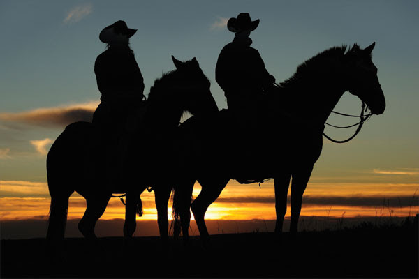 Western Horse Guide 2014 Canadian Cowboy Country Magazine