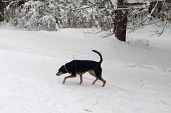 Tut_SNOW_3212