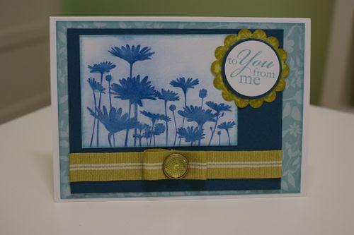 Blue upsy daisy