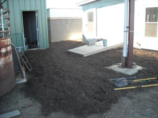 Landscaping Mulch Around Root Cellar