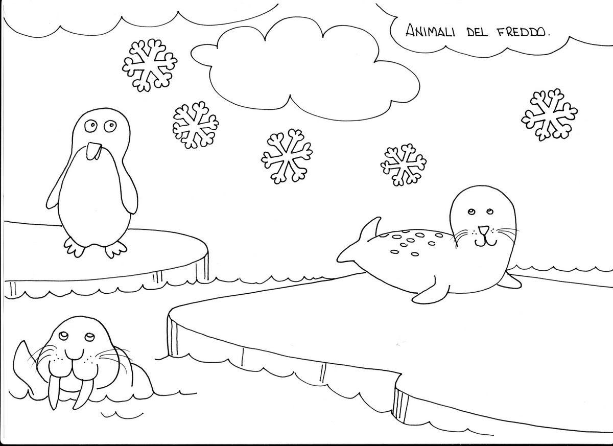 Disegni Animali Invertebrati Da Colorare Migliori Pagine Da