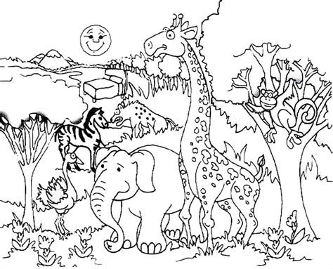 giraffe  forest animals coloring preschool  homeschool