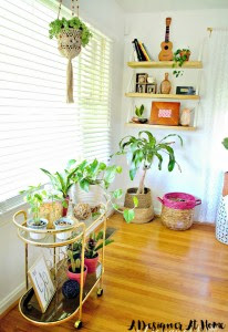 bright plant fileld corner of a living room with a bar cart turned plant cart and diy shelves bring in an element of industrial rustic feel