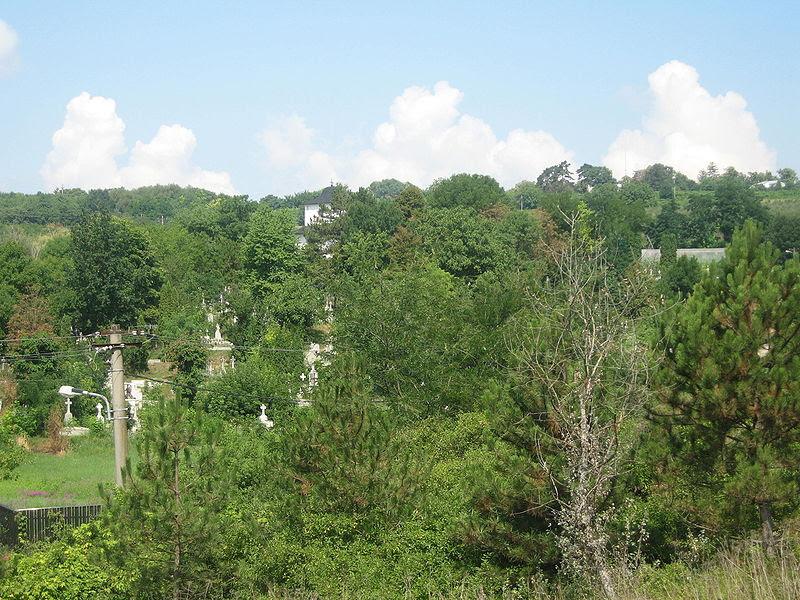 Fișier:Mănăstirea Podgoria Copou6.jpg