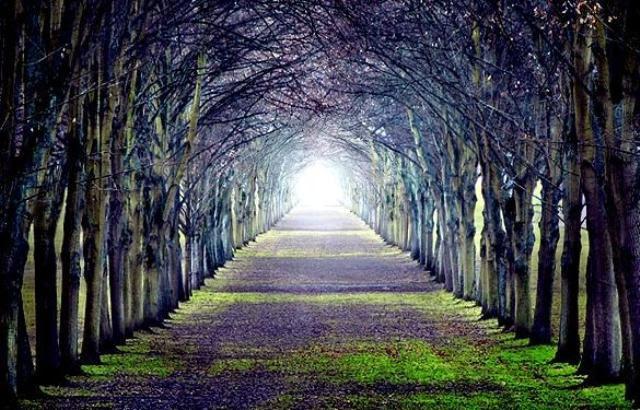 http://www.diakonima.gr/wp-content/uploads/2010/06/209538-untitled-fos.jpg
