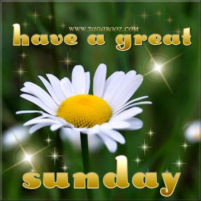 Have A Great Sunday Comments Graphics Images Memes Pics E