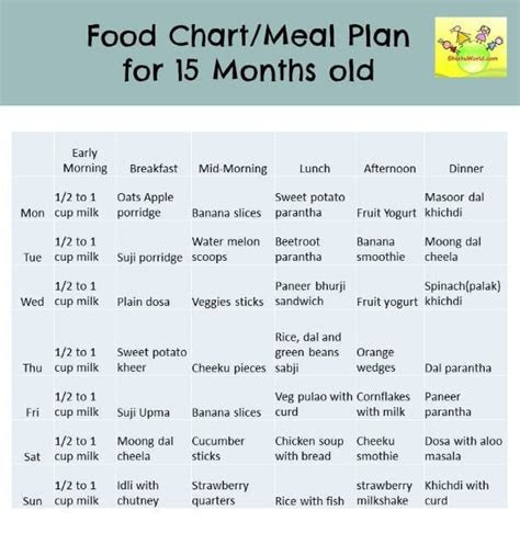 months food chart meal plan food chart