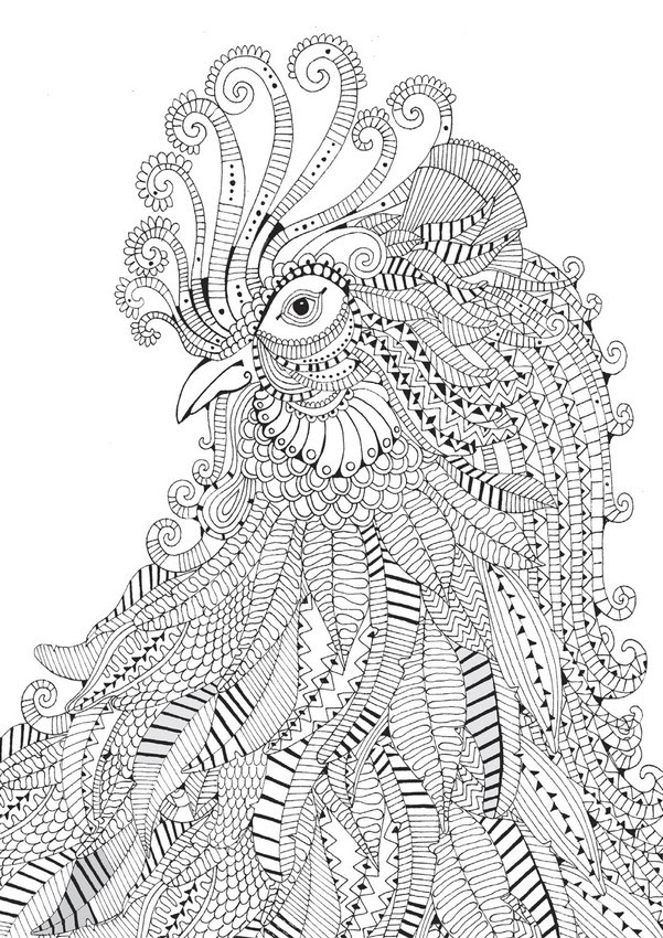25 Cute Parrot Coloring Pages Your Toddler Will Love To Color | 850x601