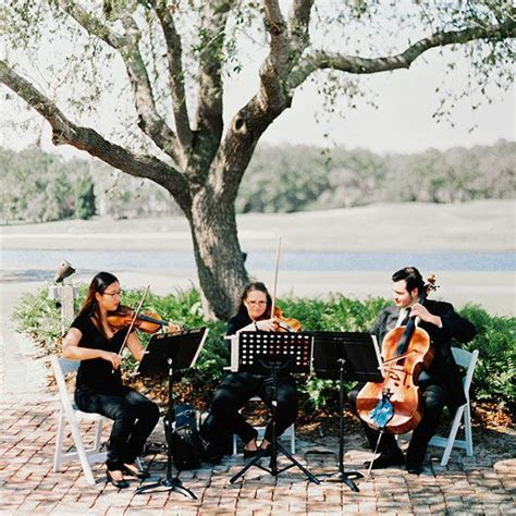 1000  ideas about String Quartet on Pinterest   Country