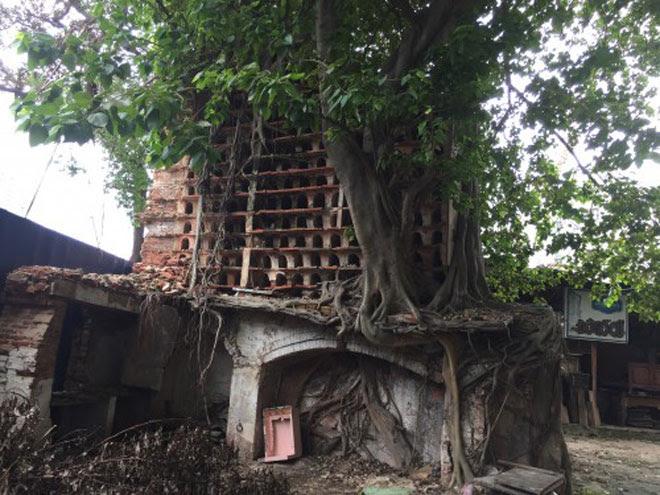 Ngôi đền thiêng và bí ẩn về người Tamil giữa Sài thành - 1